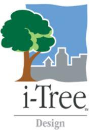 i tree design icon