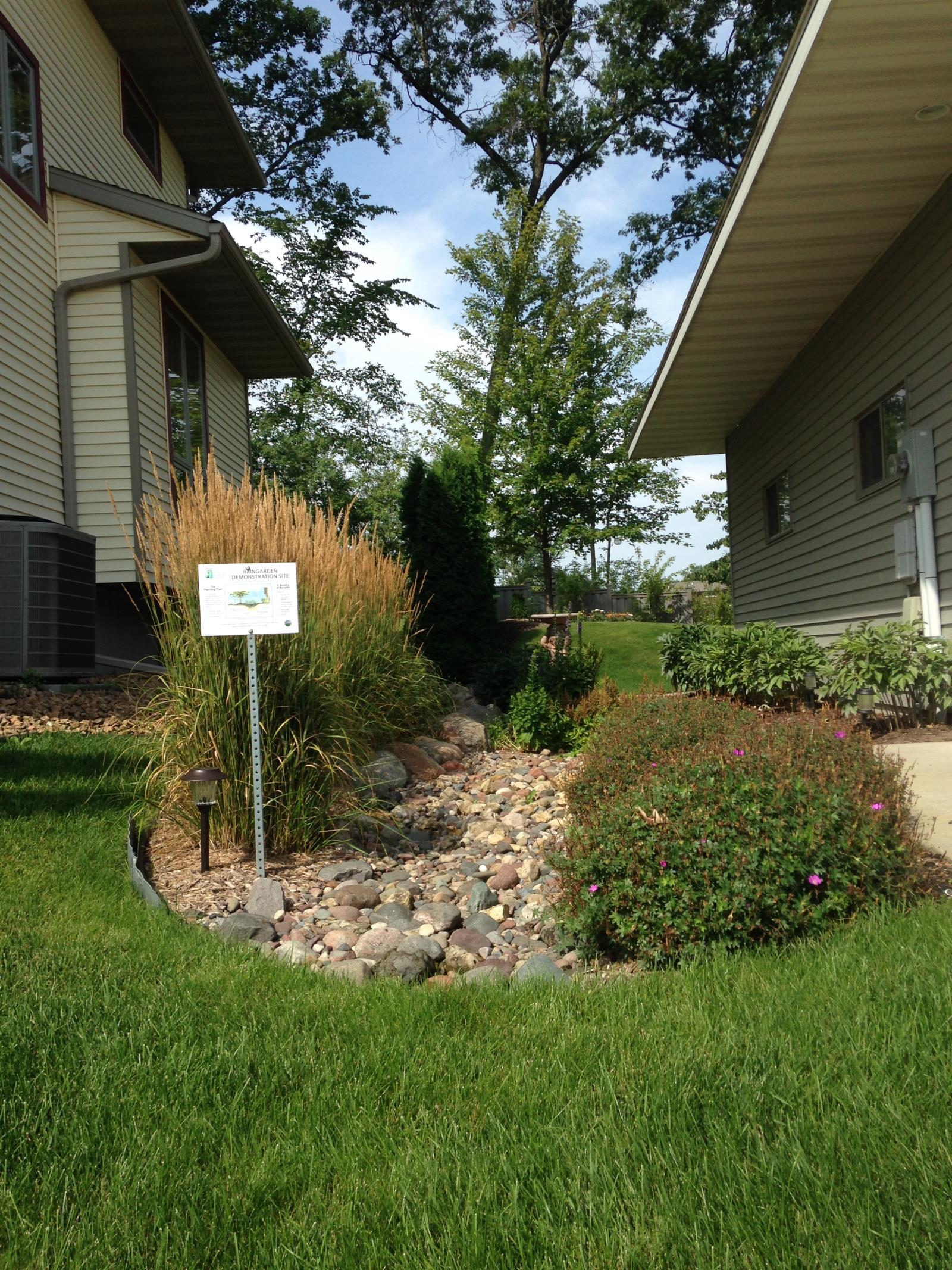 Rain gardens are beautiful, low maintenance gardens that reduce the amount of yard that needs to be mowed. (Installed in 2009)