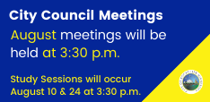 Council Meeting June