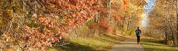 paved trail-fall